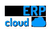 Sistema de Gestão Empresarial na Nuvem